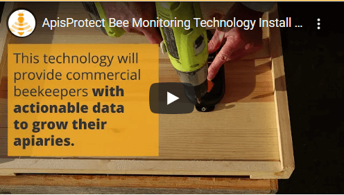ApisProtect Bee Monitoring Equipment