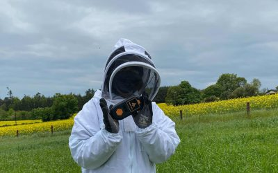 """""""One firm also at the forefront of the honey bee industry is Irish business ApisProtect."""" BBC News Article"""