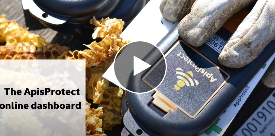 ApisProtect Dashboard Video